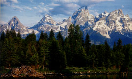 Teton National Park RV Rental